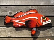 Red Rockfish  SOLD