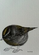 "TAYLOR; Kinglet; ink drawing on paper with watercolour, mounted on wooden cradle, finished with resin; 4""x3""SOLD"
