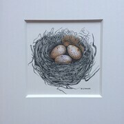 TAYLOR; Small Nest (a commission), ink and watercolour on paper, 4.5 x 4.5 SOLD